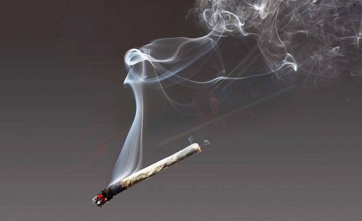 Hút thuốc lá thể gây ung thư dạ dày